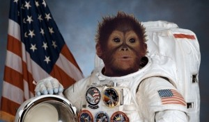 SpaceMonkey1-e1349871271848